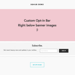 Squarespace Plugins Custom Opt-in Bar